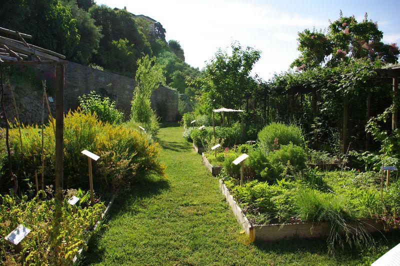 Le jardin des plantes tinctoriales de lauris for Animalerie du jardin des plantes